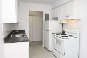 1 Bedroom for Rent near Homer Watson Blvd & Stirling Ave S! Kitchener / Waterloo Kitchener Area image 5