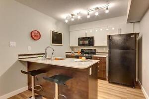 Experience the Premium Lifestyle at Village at the Hamptons Edmonton Edmonton Area image 6