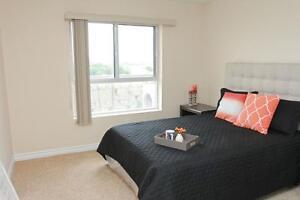 Large 2 Bedroom - Dishwasher, A/C and more! Cambridge Kitchener Area image 5