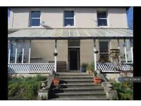 1 bedroom flat in Nilgala House, Bideford, EX39 (1 bed)