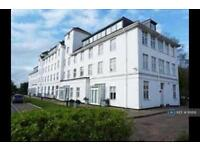 1 bedroom flat in Berrywood Drive, Northampton , NN5 (1 bed)