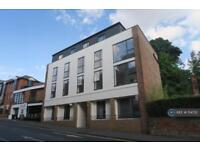 3 bedroom flat in Sydenham Road, Guildford, GU1 (3 bed)