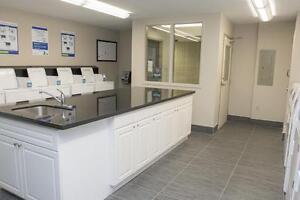 Large 1 Bedroom Apartments near Oxford & Richmond in London London Ontario image 12