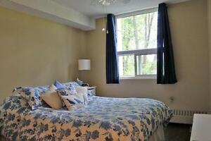 Non-Smoking 2 Bedroom Apartment for Rent in Charming Stratford Stratford Kitchener Area image 15