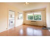 1 bedroom flat in Wimbledon, Wimbledon , SW19 (1 bed)