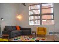 1 bedroom flat in New Hampton Lofts, Birmingham, B18 (1 bed)