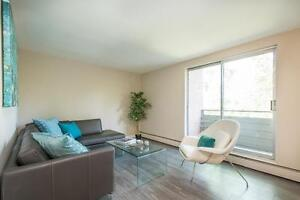 Renovated One Bedroom: Ideal Downtown Location London Ontario image 2