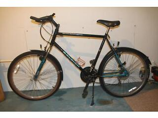 Raleigh Activator 15 speed bicycle