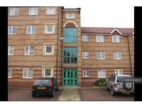 2 bedroom flat in Carpathian Court, Birmingham, B18 (2 bed)