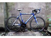 VITESSE SPRINT, 22.5 inch, mens racer racing road bike, 18 speed
