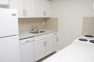 All Inclusive Living in Hamilton ~ Fully Renovated 1 Bedroom!