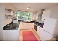 Wandsworth / Putney - five bedroom maisonette - ideal for students or sharers