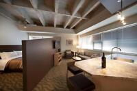 FULLY FURNISHED - The Galen Lofts - Monthly Rentals