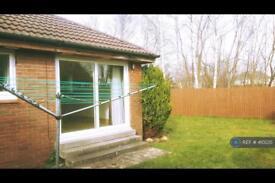 1 bedroom house in Arnott Quadrant, Motherwell, ML1 (1 bed)