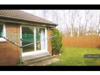 1 bedroom house in Arnott Quadrant, Motherwell, ML1 (1 bed)