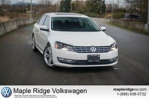 2014 Volkswagen Passat 3.6L Highline