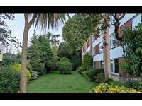 3 bedroom flat in Walton-On-Thames, Walton-On-Thames, KT12 (3 bed) (#1184328)