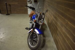 2017 Indian Motorcycles Scout Custom Liquidation hivernale 250 m