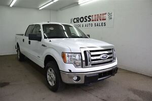2012 Ford F-150 XLT | Power Options | Camera | Easy Financing Edmonton Edmonton Area image 4