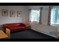 2 bedroom flat in Eden Court, London, W5 (2 bed)