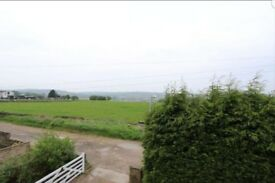 Immaculate 3 bedroom detached with garden all around property to let.