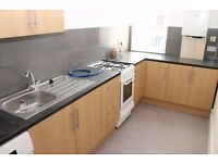 Large studio flat with separate kitchen - Newly refurbished