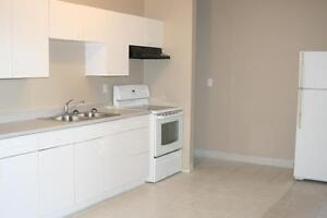 4 Bedroom Apt All Inclusive Walking Distance to uOttawa!