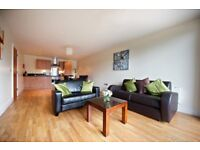Proffesional 2 Bedroom House/Flat Wanted.
