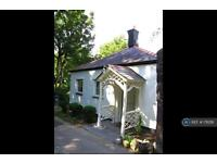 3 bedroom house in Belmont Road, Bangor, LL57 (3 bed)