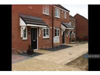 3 bedroom house in Brooklime Avenue, Stockton On Tees, TS18 (3 bed)