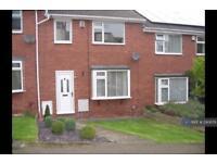 3 bedroom house in Westville Road, Barnsley, S75 (3 bed)