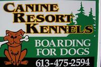 CANINE RESORT KENNELS