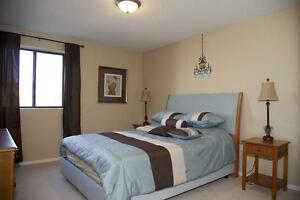 St. Thomas 1 Bedroom Apartment for Rent: Rooftop pool, gym, A/C London Ontario image 5
