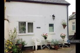 1 bedroom house in Alphington Rd, Exeter, EX2 (1 bed)