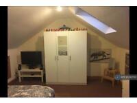 1 bedroom in Hafod Street, Cardiff, CF11