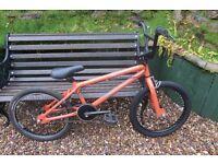 Bike X rated Decoy bmx