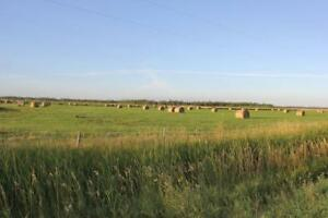 Price Reduced 160 acres for sale