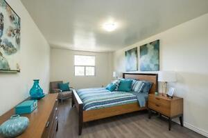 Modern Renovated One Bedroom in Strathroy - New Kitchens! London Ontario image 7