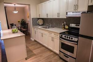 New reno! 1 bedroom Apartment in North Kildonan