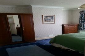 LARGE ACCOMODATION IN ENFIELD - BILLS INC