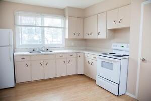 Renovated 1-2 BDRM Apartment in Esterhazy Regina Regina Area image 9