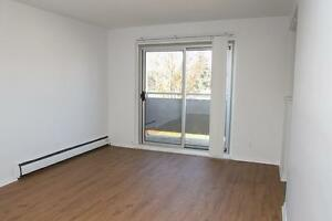 1 Bedroom for Rent near Homer Watson Blvd & Stirling Ave S! Kitchener / Waterloo Kitchener Area image 2