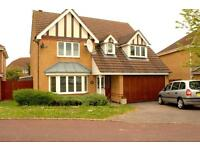 5 bedrooms in Lilleshall Drive, Bedford
