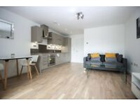 Stunning 1 bed apartment available mid January in Canary wharf with great transport links-tg