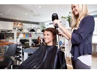 Female Hairdressers jobs available in New Beauty Salon 120 GBP per day