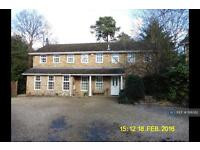 5 bedroom house in Pinehill Road, Crowthorne, RG45 (5 bed)