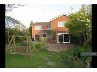 5 bedroom house in Reading Road, Reading, RG7 (5 bed)