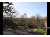 1 bedroom flat in Rossiter Lodge, Guildford, GU1 (1 bed)