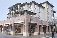 One Bedroom+Den For Rent at The Village at Thunderbird Centre...