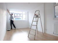 painter and decorater walpaper hangings